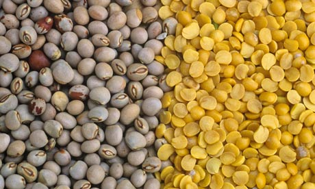 literature review on food security in kenya
