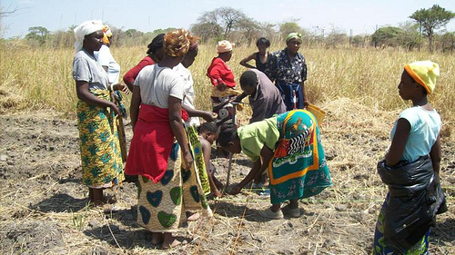 Zambian women farmers look at the soil outside the capital city of Lusaka, September 2011