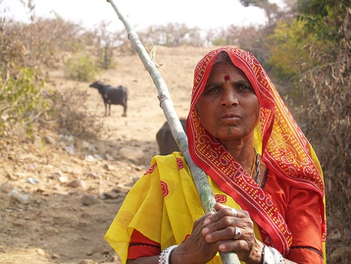 Tribal woman herder in Chittogarh District, India