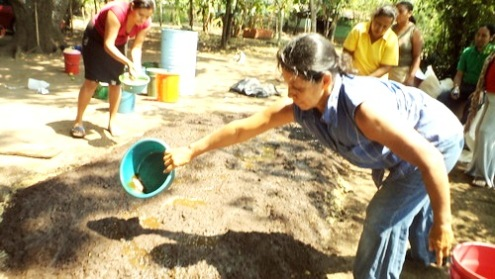 Los Largatos women of El Salvator work to insure crops and save forested land in the region