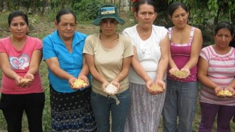Rural women holding seeds