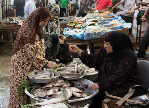 Cairo women fish sellers in the market