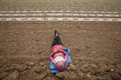 Beijing woman farmer