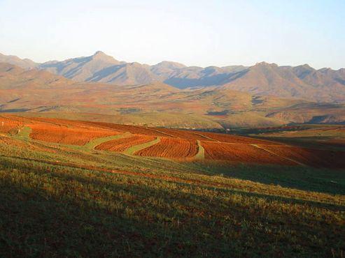 Rolling farmland in Lesotho, Africa