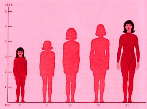 women's height chart