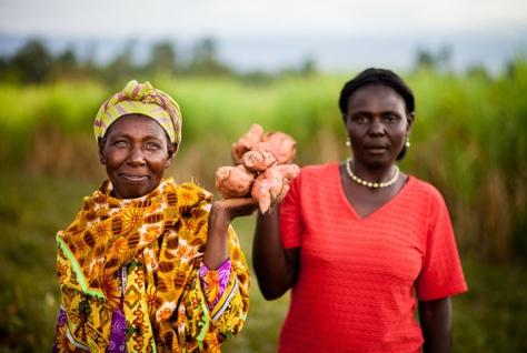 Women holding up orange flesh sweet potatoes