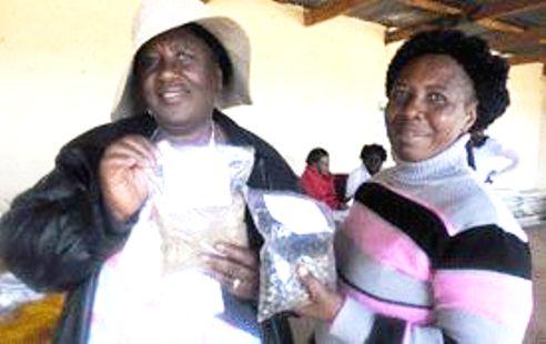 Women coffee farmers Botswana