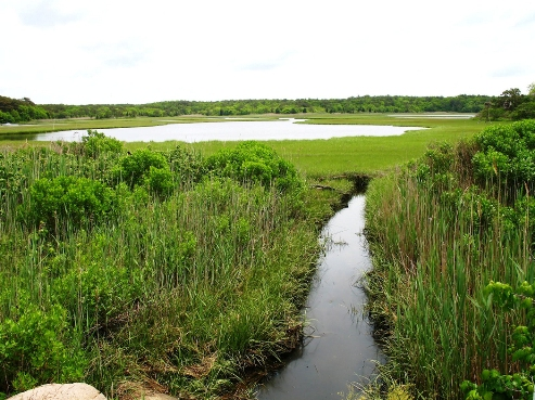Cape Cod Massachusetts estuary