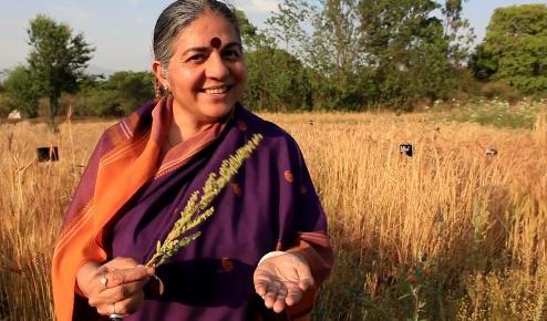 Vandana Shiva holds seeds in her hand