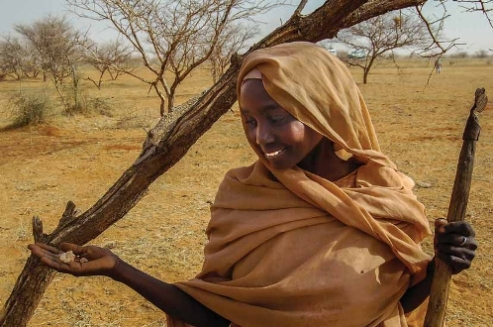 Woman farmer Sudan