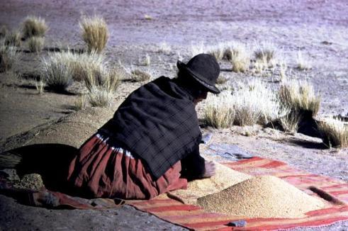 Bolivian indigeous woman