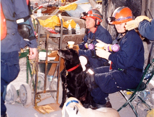 Woman SAR dog handler & dog at Ground Zero