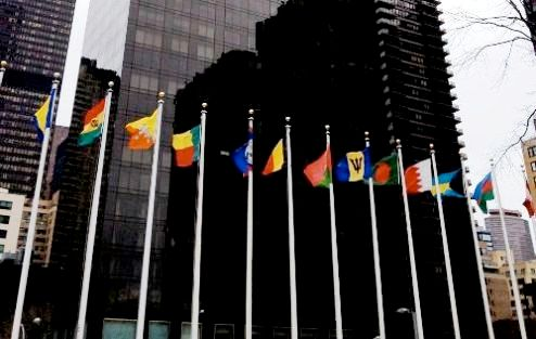 United Nations flags in New York