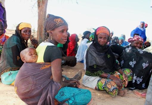 Women farmers Niger