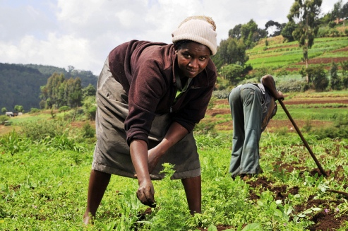 Woman farmer Mount Kenya