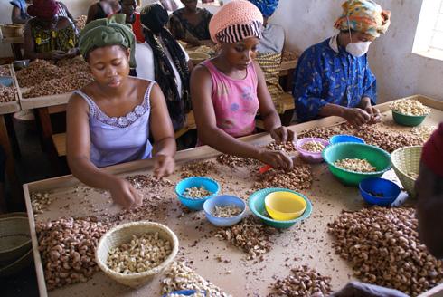 Women preparing cashews in Burkina Faso. Image: Javier  Mármol