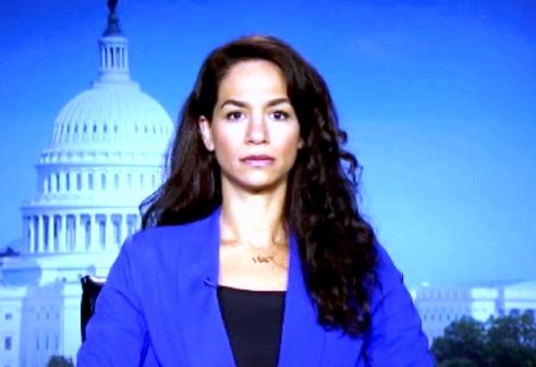 Noura Erakat on Al Jazeera America news